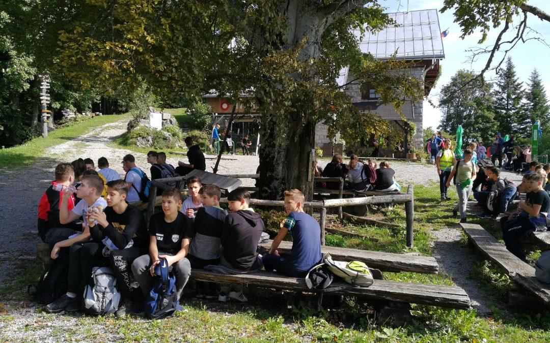 Pohod na Mirno goro