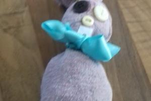 zajcki1